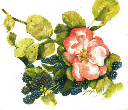Rose mit Beeren