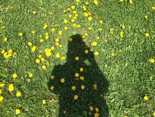 On The Dandelion Cloud