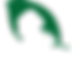 Mary J Cannabis Secondary Logo | Weed Store Kingston