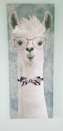 llama picture on wal