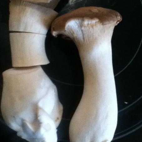 Shroom 'scallops' anyone?!?!