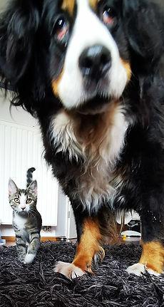 Mali - Lilly mit Freundin.jpg