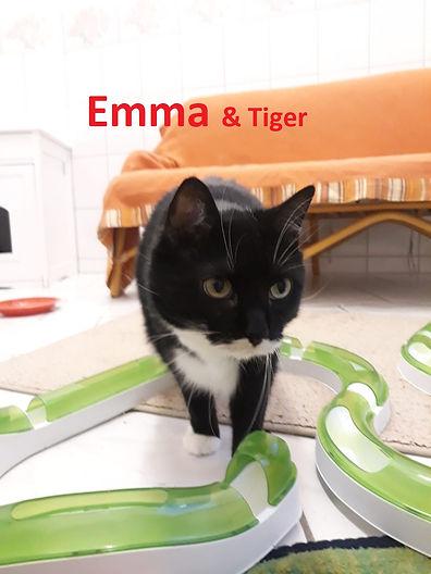 Emma 2(3)-1.jpg