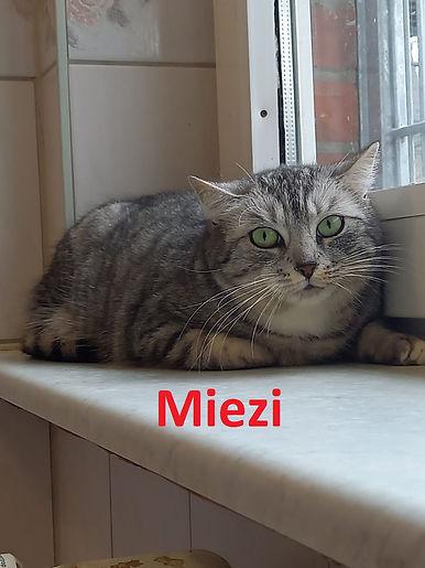 Miezi (1)-1.jpg