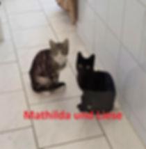 Liese und Mathilda (2)-1.jpg