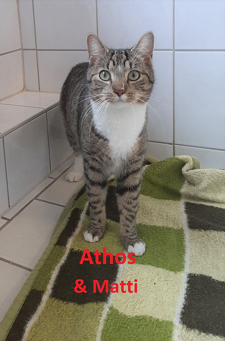 Athos & Matti (2)-.jpg