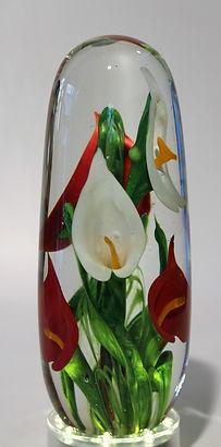 Arums rouges et blancs.JPG