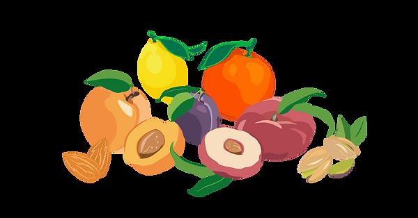 fruits.png