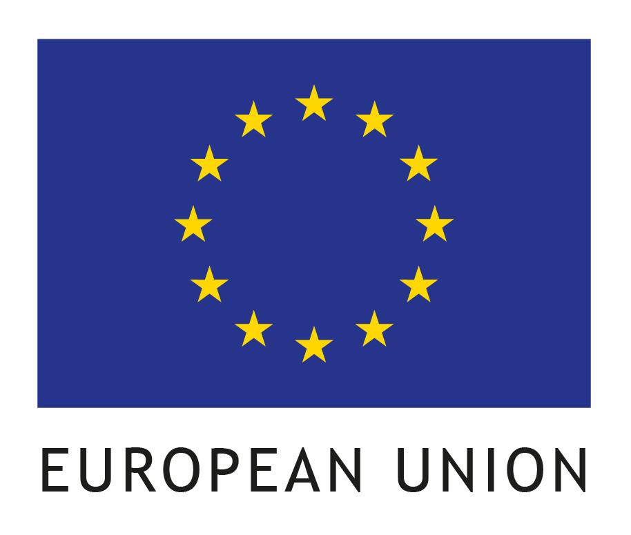 EU flag small items RGB_2.jpg
