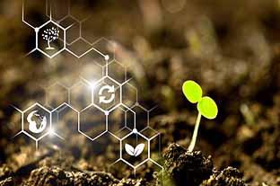 Financez vos projets de transition écologique avec le dispositif Ademe Express Tremplin