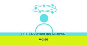 Buzzword Breakdown: Agile