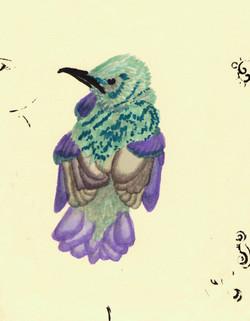 Raebird