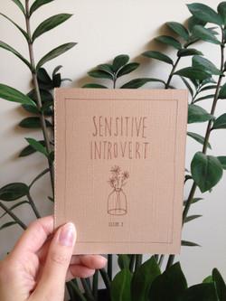 Sensitive Introvert 2 Cover