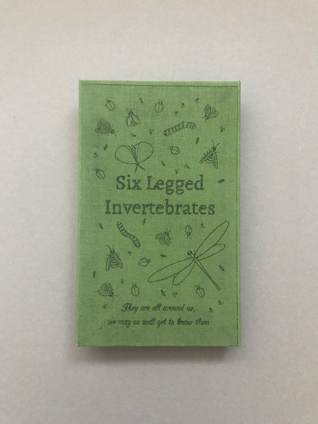 Six Legged Invertebrates