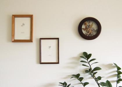 Flora, Fauna & Fungus