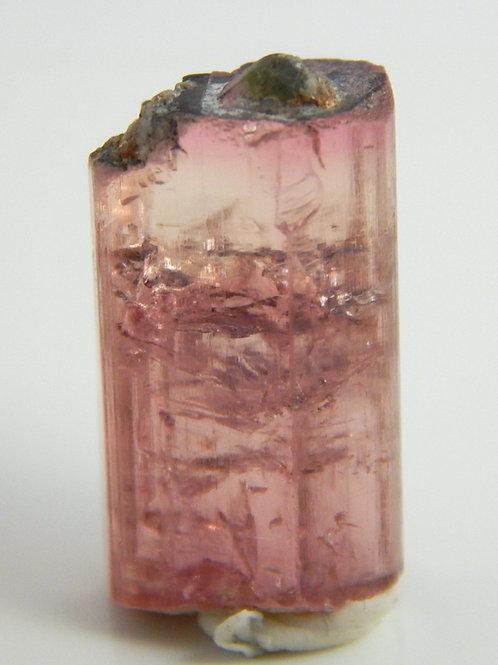 Purple Capped Bi-color Nigerian Tourmaline Crystal Rough 4.5 Grams (#133)