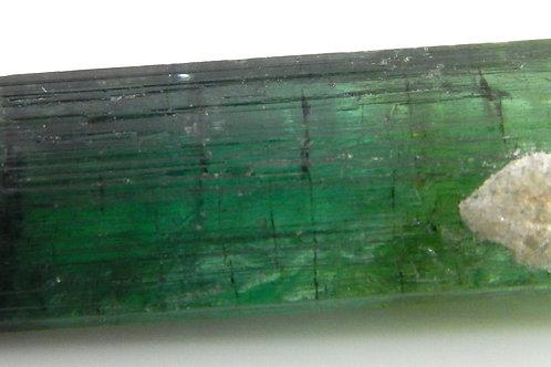Bi-Color Green Tourmaline Facet Rough 2.9 Grams  (#47)