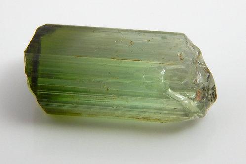 Congo Bi color Tourmaline Facet Rough 1.3 Grams (#496p)