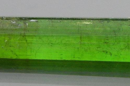 Green Tourmaline Crystal Rough 1.1g (#14)