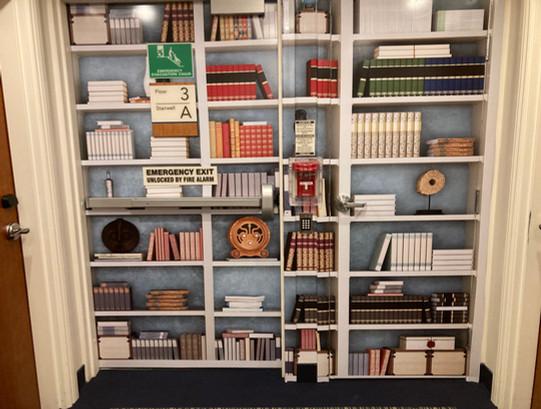 Bookshelf Sesnory Mural