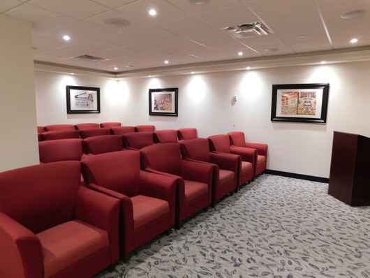 Queens Estate Theatre Room