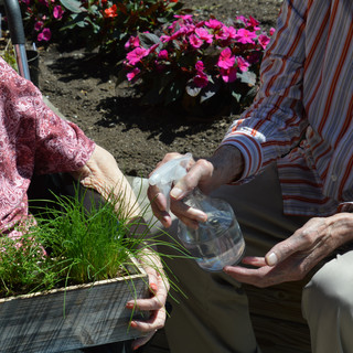Residents tending to Greenview herb garden