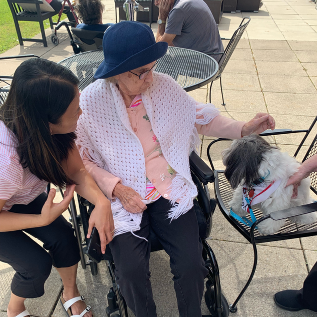 Pet Therapy at Greenview Residence