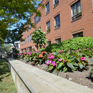 Greenview Exterior focussed on flower bed