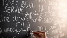 Inklusion als gemeinsame Sprache
