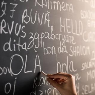Beyond English Fluency: What's Next?