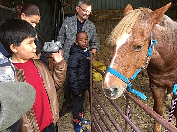 Children Visit the Ponies.jpg
