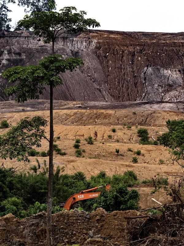 Sademetsät muuttuvat ennätysvauhtia kaivoksiksi ja palmuöljyplantaaseiksi.