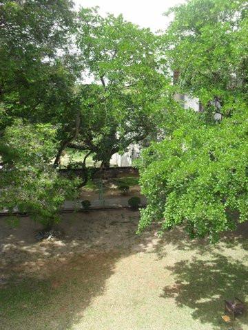 Kampusaluetta- se on vihreä ja viihtyisä.
