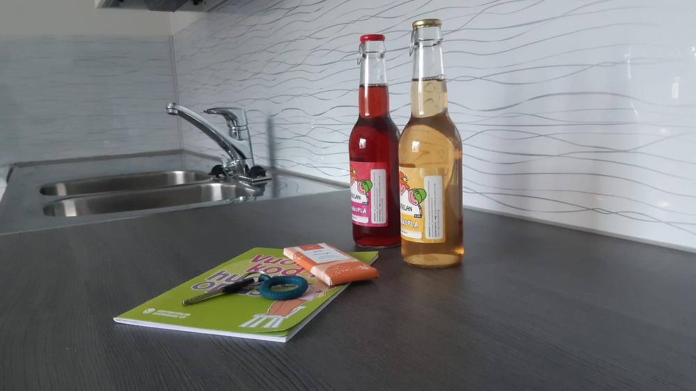 Kodin remontit voivat nostaa kuukausivuokraa.