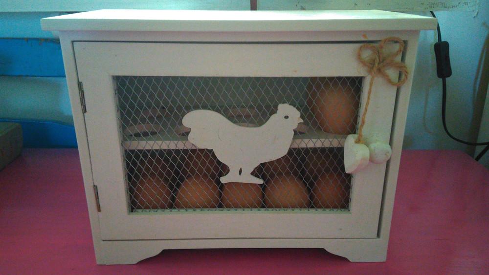 Kananmunissa on runsaasti proteiinia, terveellisiä rasvoja, vitamiineja ja mineraaleja