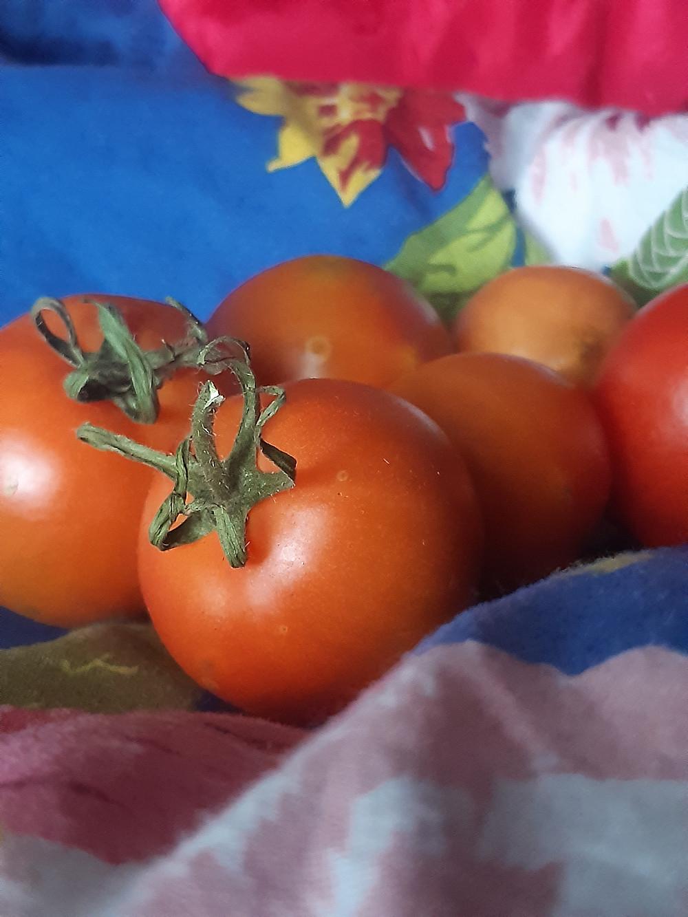Kauniin punainen tomaatti hidastaa ihon vanhenemista ja antaa suojaa UV-säteiltä.