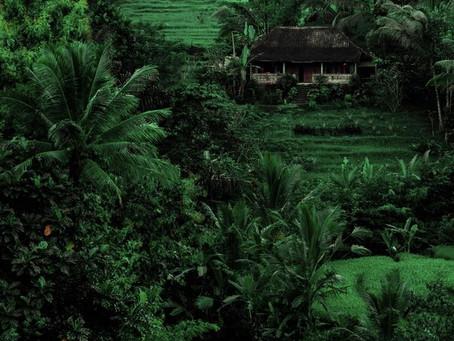 Syö, rukoile ja rakasta Jaavanmerellä - mitä jokaisen pitää tietää Balista?