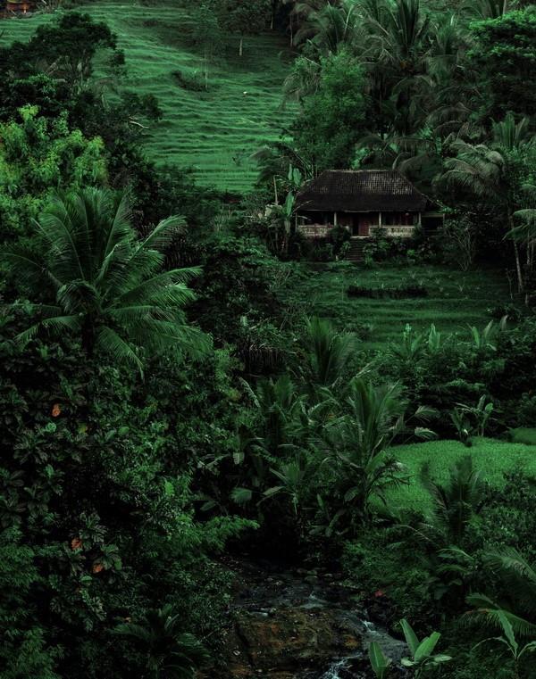 Balilla kannattaa matkustaa myös turistiresorttien ulkopuolelle.