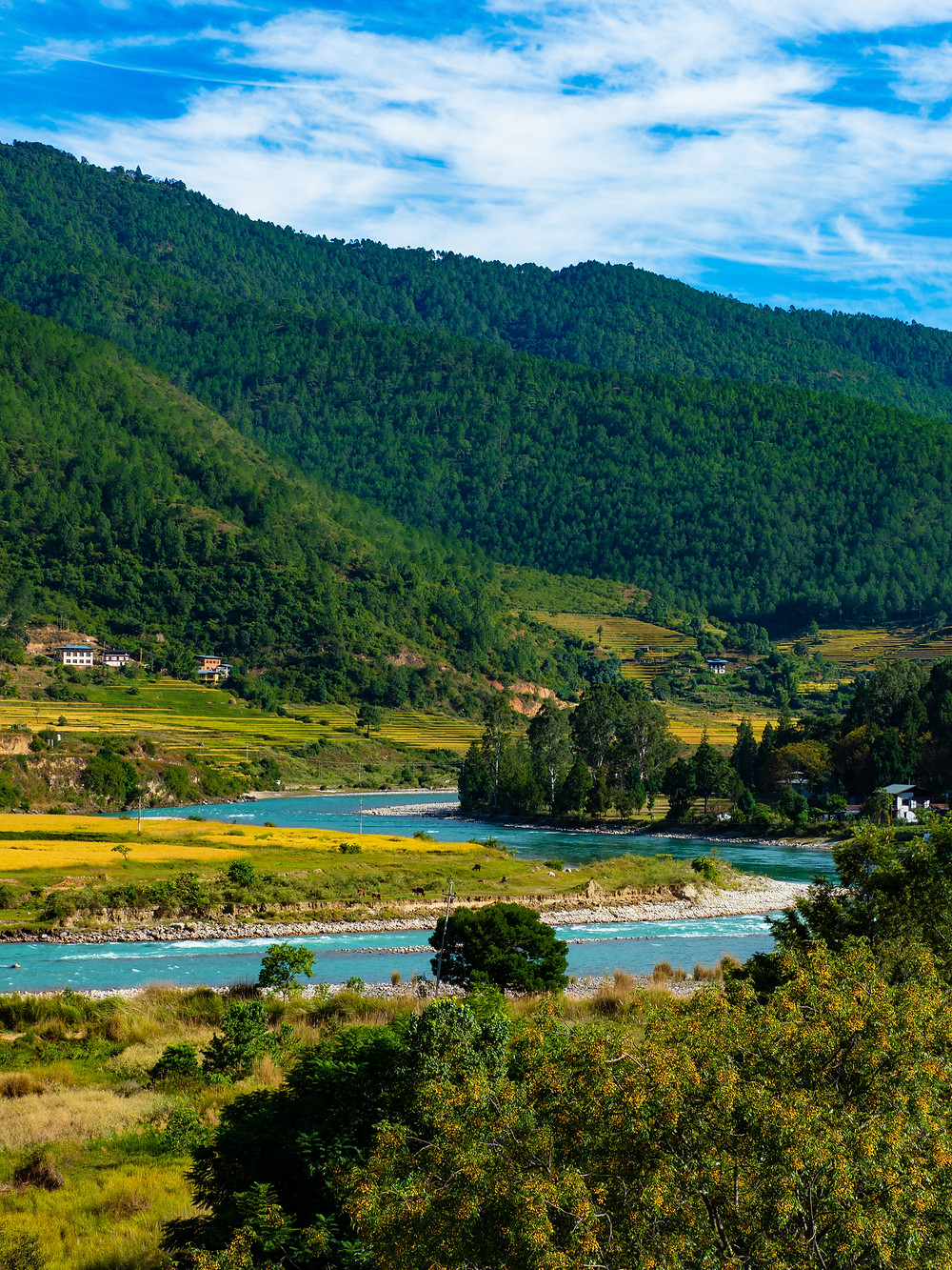 Joet, vuoret ja sininen taivas ovat tyypillinen näky Bhutanissa.