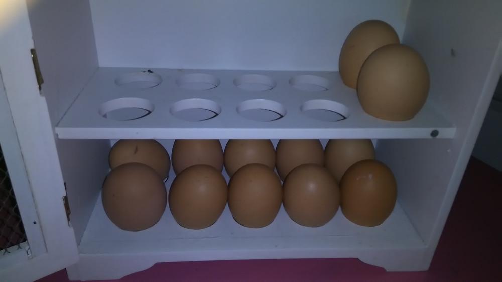 Kananmunia voi ja kannattaa syödä päivittäin