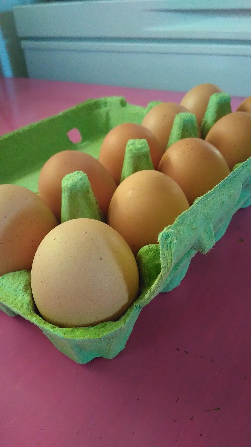 Omien kanojen munissa on voittamaton maku