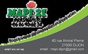 LOGO MAPI 21.png