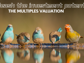 The Multiples: A Quick and Dirty Approach to Valuing a Company.