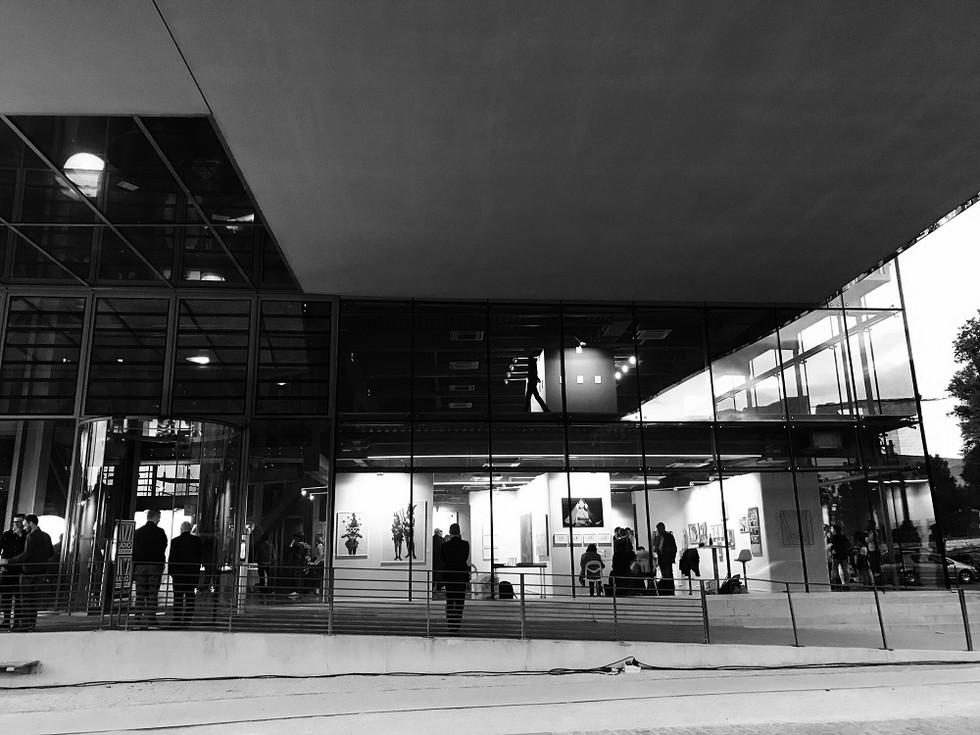Marie-Boralevi-Docks-Art-Fair-2017 (1).j