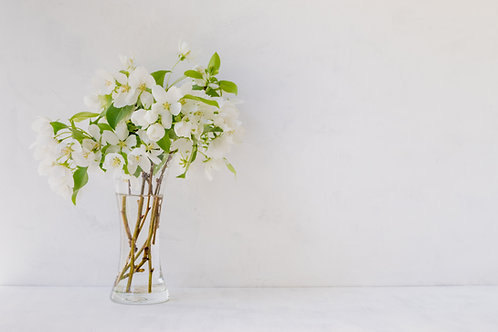 Fresh Cut Blossoms
