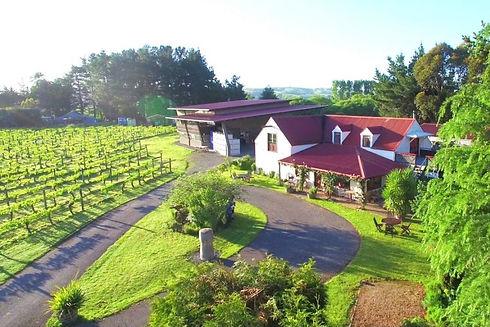 gladstone-vineyard-e1527484908440-900x60