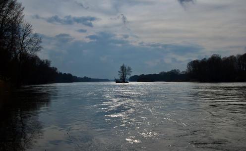 Les pieds dans la Loire