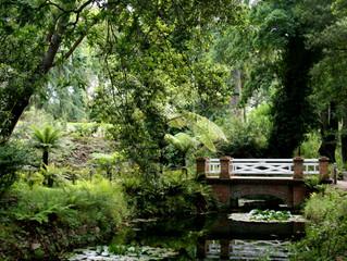 Jardín Botánico de Gijón + Eskulan