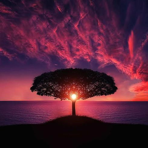 Spiritual consciousness: Faith, Inspiration and Love | Americas-Europe-Africa