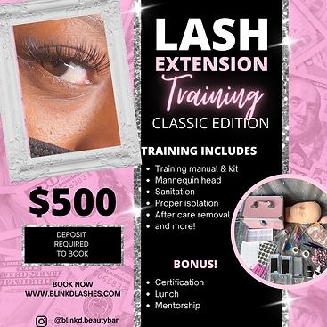 Copy of LASH training flyer.png